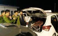 cho-gau-hon-100kg-tu-ha-tinh-di-nghe-an-tieu-thu-bang-xe-taxi